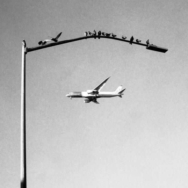 Lentajat.jpg